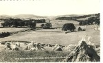 Historic postcard with views from Maxweltown Braes